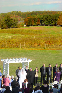 Wedding in the Vineyard - Belle Mount Vineyards